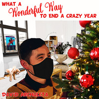 David Archuleta - What a Wonderful Way to End a Crazy Year