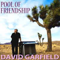David Garfield - Pool of Friendship