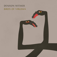 Denison Witmer - Birds of Virginia (Simplified Mix)