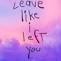 Travis Roig - Leave Like I Left You