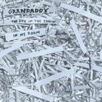 GRANDADDY - 2020's Over Covers