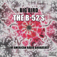 The B-52's - Big Bird (Live)