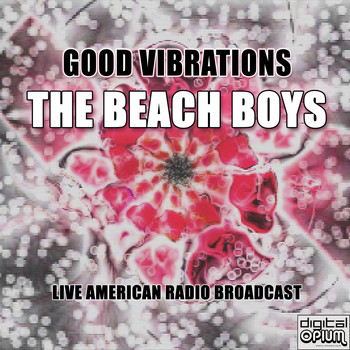 The Beach Boys - Good Vibrations (Live)