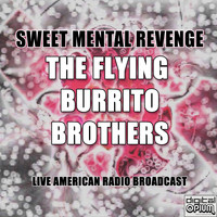 The Flying Burrito Brothers - Sweet Mental Revenge (Live)