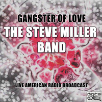 The Steve Miller Band - Gangster Of Love (Live)