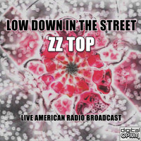 ZZ Top - Low Down In The Street (Live)