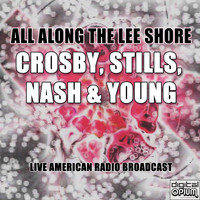 Crosby, Stills, Nash & Young - All Along the Lee Shore (Live)