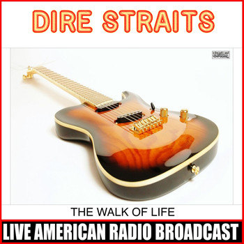 Dire Straits - The Walk Of Life (Live)