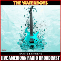 The Waterboys - Saints & Sinners
