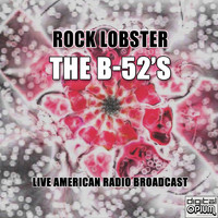 The B-52's - Rock Lobster (Live)
