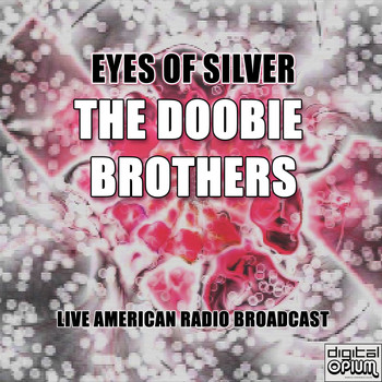 The Doobie Brothers - Eyes Of Silver (Live)