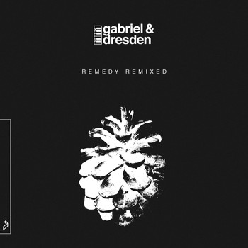 Gabriel & Dresden - Remedy (Remixed)