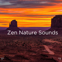 "Nature Sounds Nature Music, Nature Sounds and BodyHI - !!"" Zen Nature Sounds ""!!"