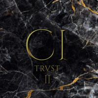 TRUST - Re.Ci.Div - Session II (Répression)