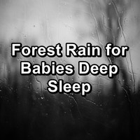 Nature Sounds - Forest Rain for Babies Deep Sleep