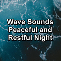 Sleep - Wave Sounds Peaceful and Restful Night