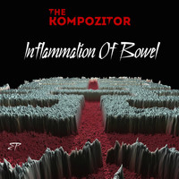 The Kompozitor / - Inflammation of Bowel - EP