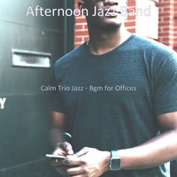 Afternoon Jazz Band - Calm Trio Jazz - Bgm for Offices