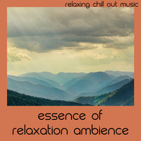 Relaxing Chill Out Music - Essence Of Relaxation Ambience