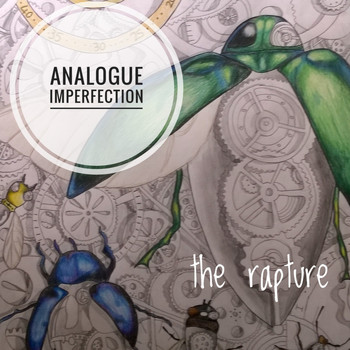 The Rapture - Analogue Imperfections
