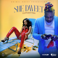Elephant Man - She Dweet (Explicit)