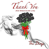 The Divys - Thank You (For Wrecking My Life) (Explicit)