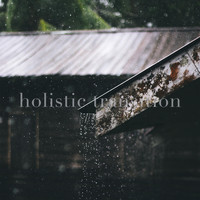 Holistic Transition - Rain on Tin Roof Distant Thunder