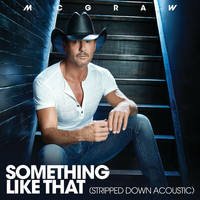 Tim McGraw - Something Like That (Stripped Down Acoustic)