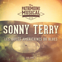 Sonny Terry - Les Idoles Américaines Du Blues: Sonny Terry, Vol. 1