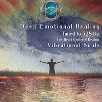 Vibrational Souls / - Deep Emotional Healing