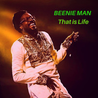 Beenie Man - That Is Life (Remastered)