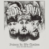 Dr. John - Poison In My Chalice (Live In Denver '74)