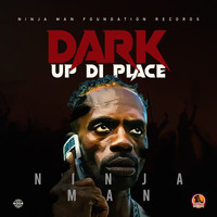 Ninja Man - Dark Up Di Place