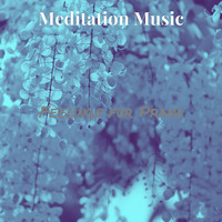 Meditation Music - Feelings for Prana