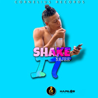 Najee - Shake It (Explicit)