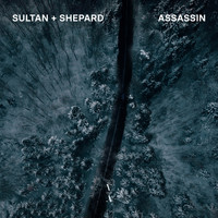 Sultan + Shepard - Assassin