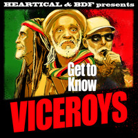 The Viceroys - Get To Know