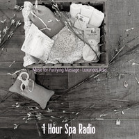 1 Hour Spa Radio - Music for Purifying Massage - Luxurious Koto