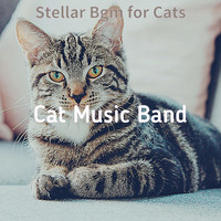Cat Music Band - Stellar Bgm for Cats