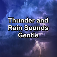 Rain Sounds for Relaxation - Thunder and Rain Sounds Gentle