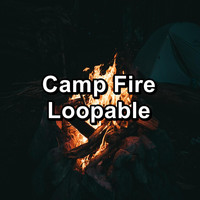 Fireplace Dream - Camp Fire Loopable