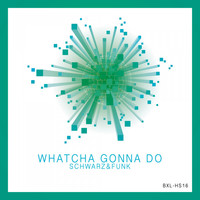 Schwarz & Funk - Whatcha Gonna Do