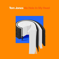 Tom Jones - No Hole In My Head (Single Edit)