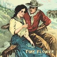 Jim Reeves - Tiny Flower