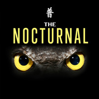 Various Artists / - The Nocturnal