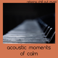 Relaxing Chill Out Music - Acoustic Moments Of Calm