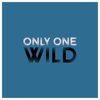 Wild - Only One