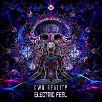 Electric Feel - Own Reality