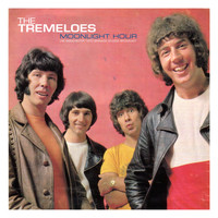 The Tremeloes - Moonlight Hour (Live 1970)