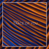 Naomi - Trace of You